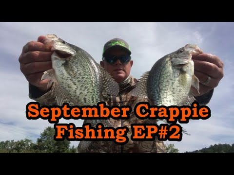 How To Catch Crappie In September,Tips,Lures And Locations/ How To Catch Early Fall Crappie
