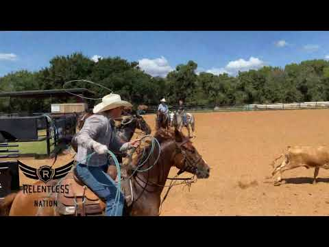 Heel Horse Position And Bridling Up With Ross Ashford