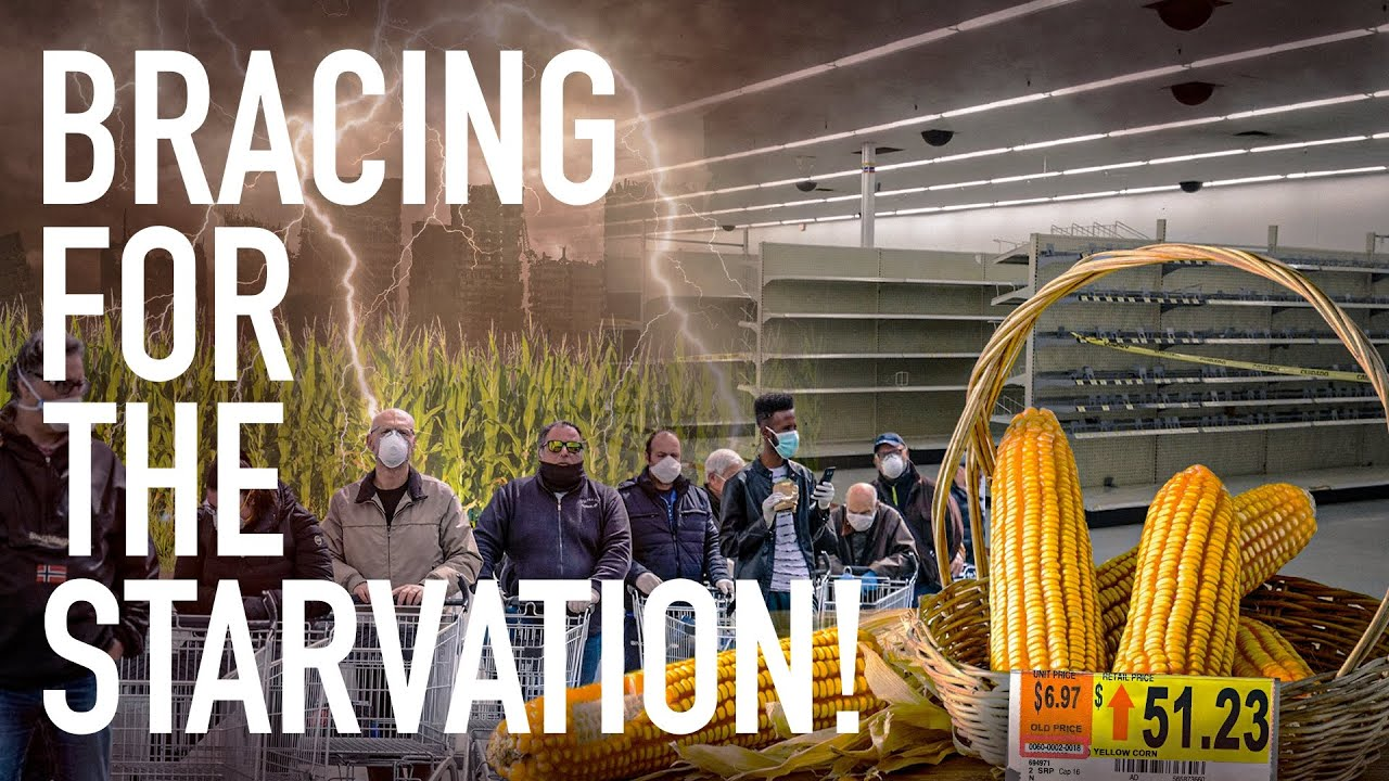 Corn Prices Are Up Roughly 50% In 2021 As Americans Brace For Years Of Horrific Food Inflation