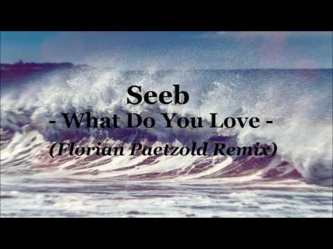 Seeb - What do You Love (Florian Paetzold Remix)