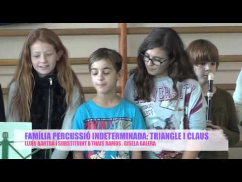 Tastet d'instruments per Santa Cecília - Escola Charles Darwin