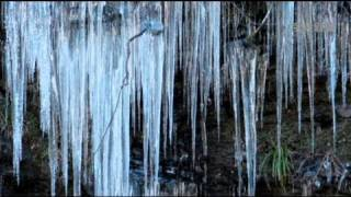 奥秩父の冬の名勝の「三十槌の氷柱」成長中!高さ10m 幅50mの岩肌に幾...