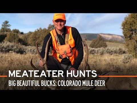 Big Beautiful Bucks: Colorado Mule Deer   S2E03   MeatEater Hunts