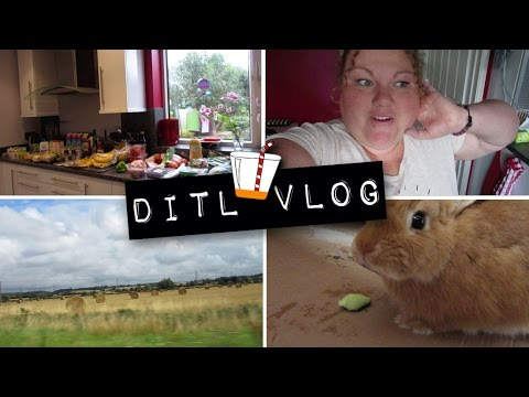 Haulin' - VLOGUST - 20th August 2015