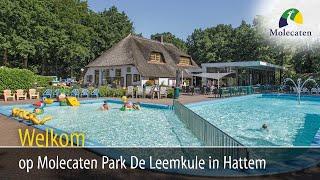 Welkom op Molecaten Park De Leemkule, Hattem, Veluwe
