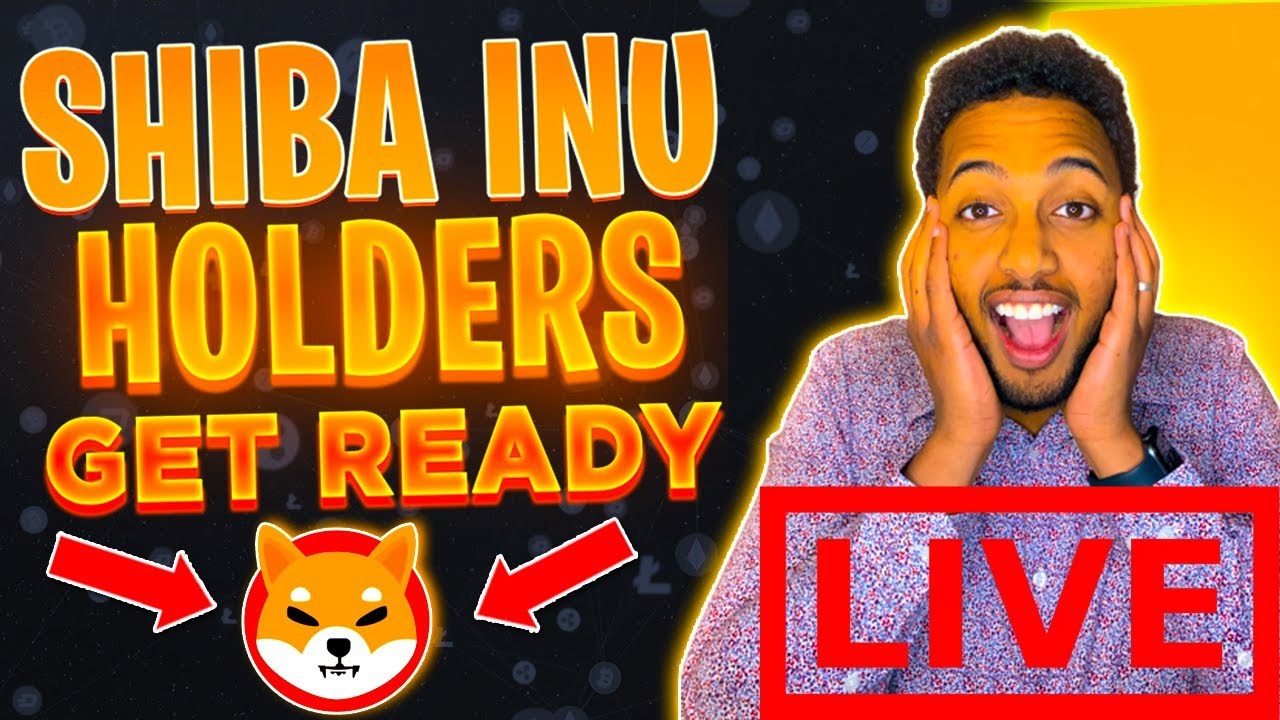 SHIBA INU TOKEN HOLDERS: BUYING MORE SHIB TOKEN! What are the best cryptos to buy now?