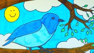 How To Draw A Cartoon Blue Bird | Kids Coloring Video