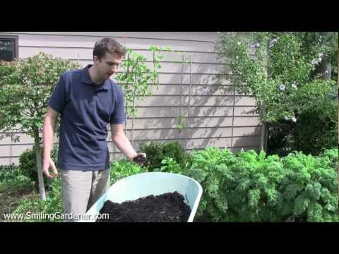 Benefits Of Composting – Why Use Compost In Your Organic Garden?