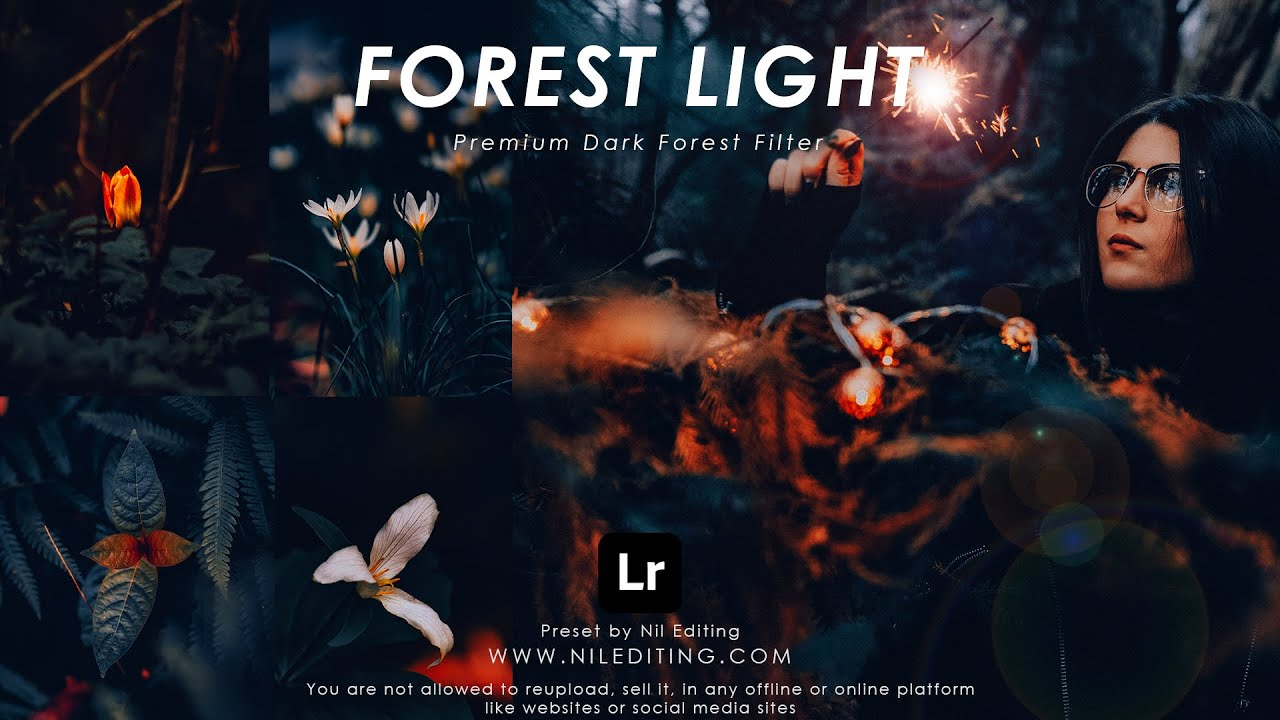 How to Edit Dark Forest Photography   Mobile Lightroom Presets DNG & XMP Free Download