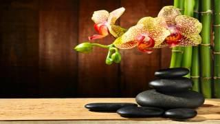 Музыка для Медитации и Мудрых Мыслей | Музыка для Медитации Альбом