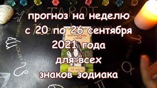 Таро прогноз на неделю с 20 по 26 сентября 2021 года. Карты Таро Магических Собак.