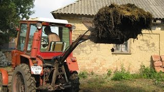 Трактор вантажити вилами гній