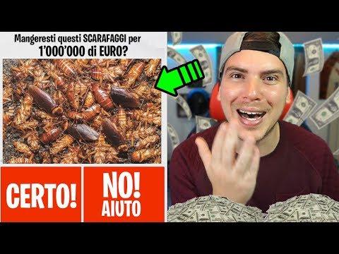 COSA FARESTI PER 1 MILIONE DI EURO?? (Video Interattivo)