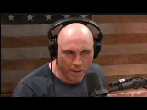 Joe Rogan - Prostitution Should Be Legal
