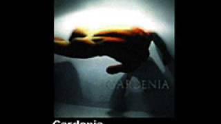 Gardenia   Sobota, czwarta rano