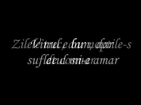Cargo - Nu mă lăsa să-mi fie dor (with Lyrics)