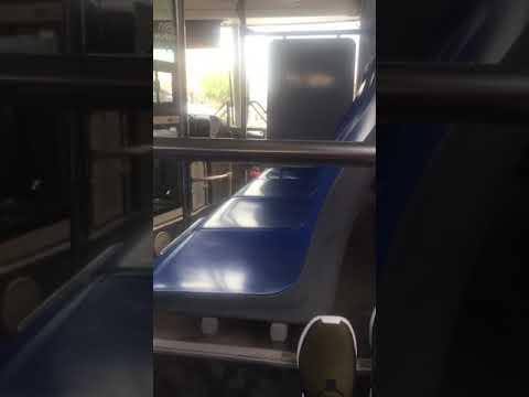 bus ride in Kuwait 🇰🇼 as transportation/is it safe?