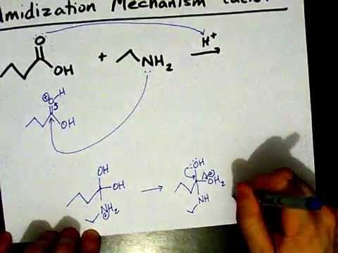 How to Make Amides: Mechanism