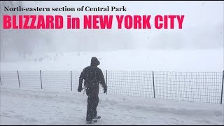 Winter Storm Jonas in New York City: Scenes from Central Park (2016)