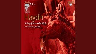 """Play Symphony No. 63 In C Major (""""La Roxelane""""), H. 1/63"""