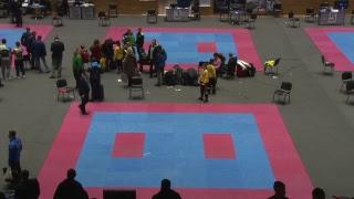 Міжнародний турнір з карате «Kharkov Open». Татамі 3 та 4