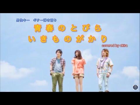 cover青春のとびら/いきものがか...