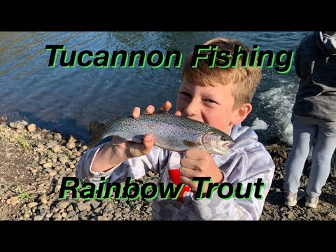 Tucannon Fishing And Camping,  Fishing For Lake Trout