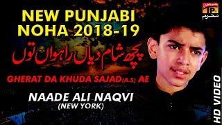 Poch Sham Diyan || Naade Ali Naqvi || New Noha || TP Moharram