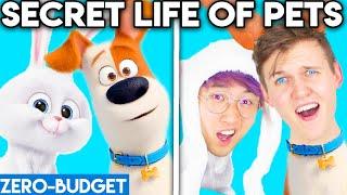 SECRET LIFE OF PETS WITH ZERO BUDGET! (LANKYBOX MOVIE PARODY)
