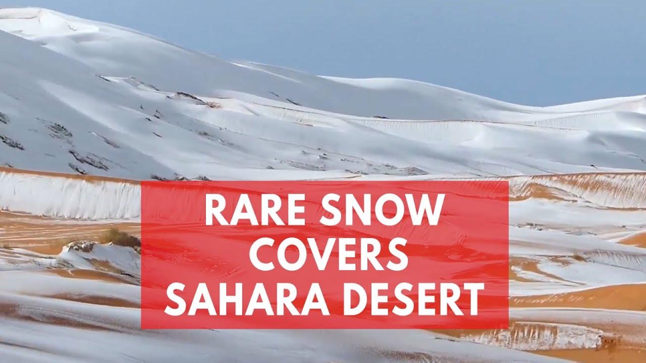 Rare Bout Of Snow Blankets Sahara Desert Sand Dunes In Algeria