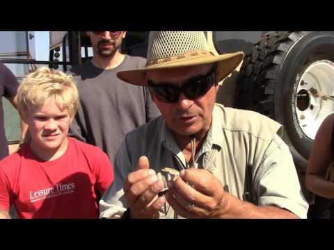 Tommy's Tour - Swakopmund Namibia - Leisure Times