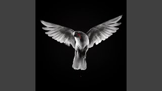 When Doves Cry (Radio Edit)