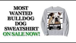 Most Wanted Bulldog Cute Funny Dog Sweatshirts - Men's, Women's, Kid's - Black, Grey, Dark Heather