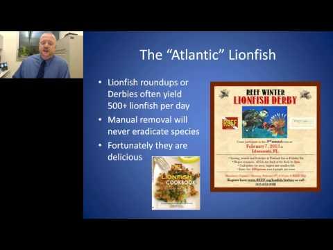 Dan Rothen - Aquaculture and Biomedical Research of Non traditional Aquatics