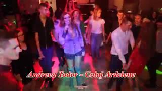 Andreea Todor &amp Formatia Armonik - Colaj Ardelene Live Vip Club Tarnova