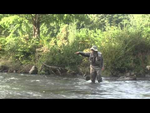 Fly Fishing At Gliffaes Hotel.wmv