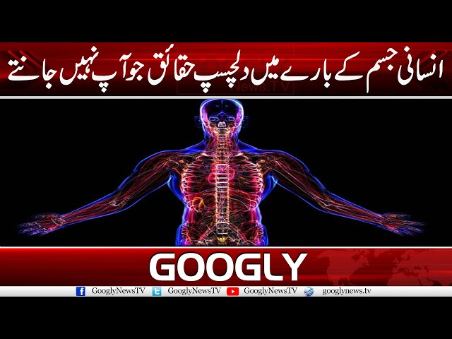 Insaani Jism Kai Barey Mein Dilchasp Haqaiq Jo Aap Nahin Jantey | Googly News TV