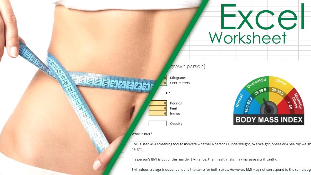 Bmi And Bmr Calculator  Excel Spreadsheet Download