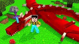 Minecraft: MATAMOS UM DRAGÃO ! - GAME OF DRAGONS Ep.6 ‹ CORUJ4 ›