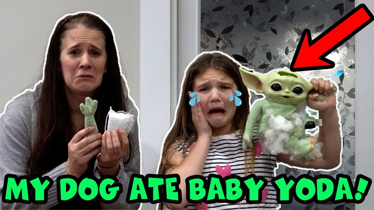 My Dog Ate Baby Yoda! RIP Baby Yoda   Save Baby Yoda