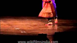 Mesmerizing Bharat Natayam performance by Classical Dance Troupe