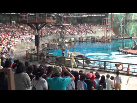 Waterworld Universal Studio Singapore How To Get There