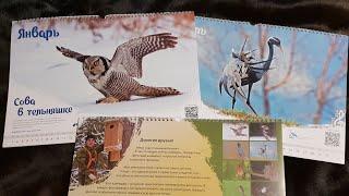 Обзор календаря с птицами на 2019 год. Автор фотографий Геннадий Колотин