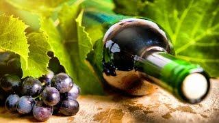 Planet Wissen - Faszination Wein
