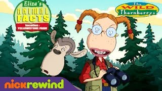 The Wild Thornberrys: Animal Facts thumbnail