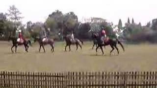 Arena Polo practice at Nusantara Polo Club - Stafaband