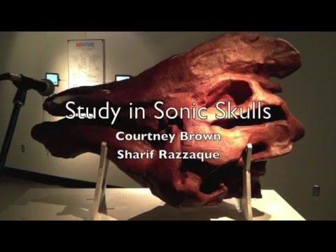 Rawr! A Study in Sonic Skulls