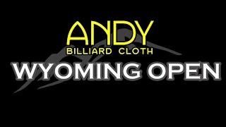 Mike Massey vs Shane VanBoening - 2016 Wyoming Open 8 Ball Finals & Massey Exhibition