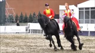 Выступление лошадей фризской породы -  кадриль (отредактированное видео)
