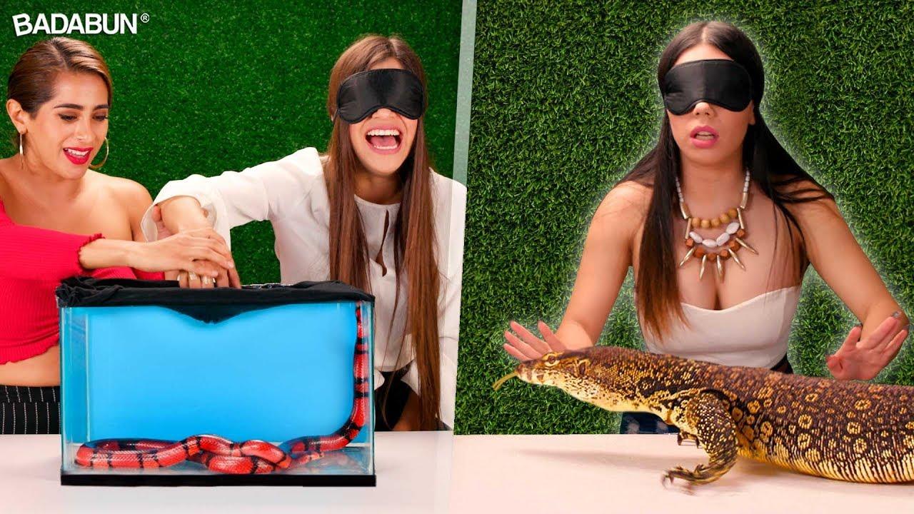 qu-hay-en-la-caja-nivel-leyenda-con-youtubers
